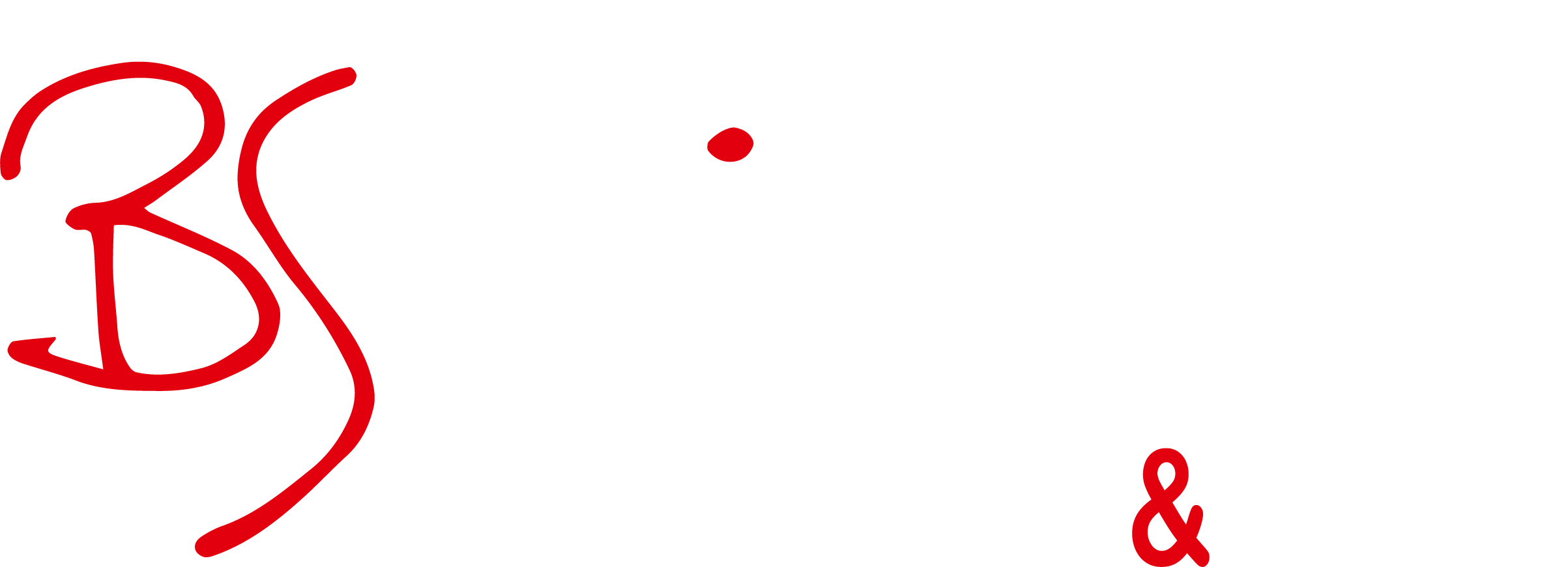 Logo BS Bike
